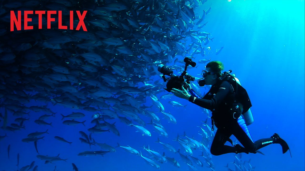 Mission Blue – Bande-annonce officielle – Netflix France [HD]
