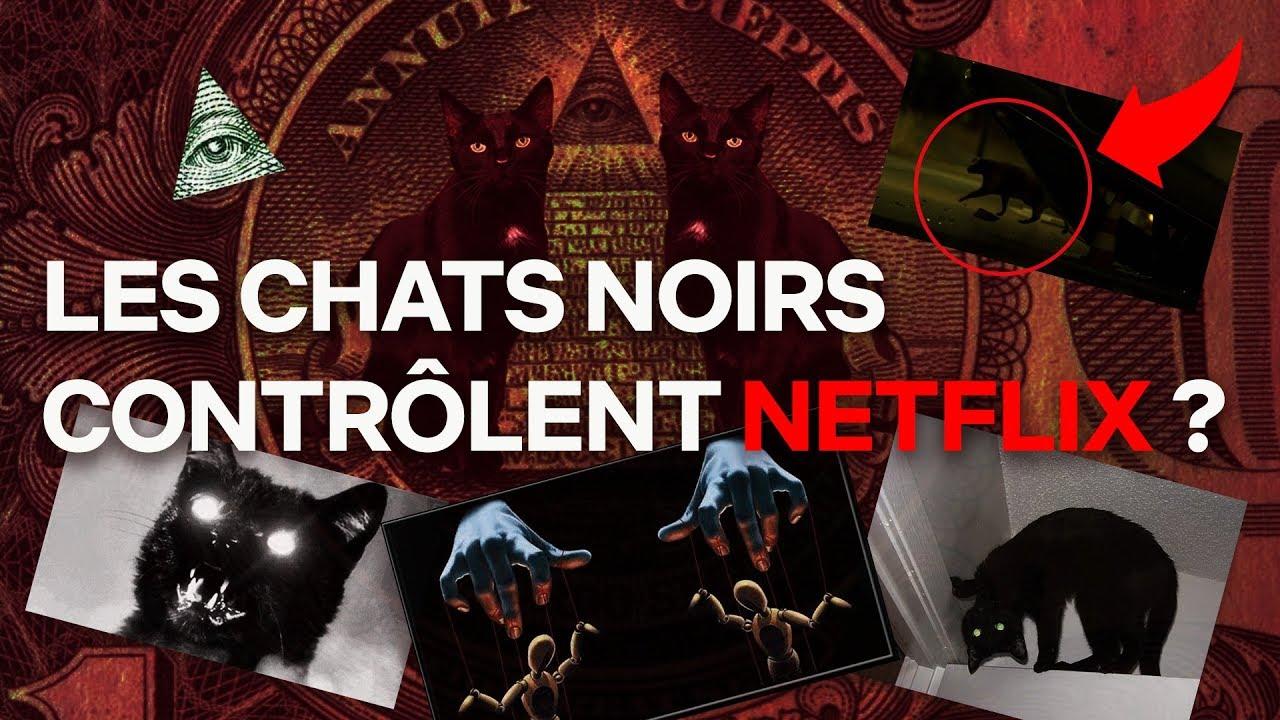 LES CHATS NOIRS CONTRÔLENT NETFLIX ? LES PREUVES ! | Adopte Un Salem | NETFLIX
