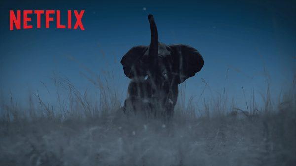 La Terre, La Nuit | Bande-annonce VF | Netflix France