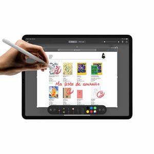 Nouveau Apple iPad Pro 11 pouces Wi Fi 1 To Argent 2e gnration 0 2 300x300 - Nouveau Apple iPad Pro (12,9pouces, Wi-Fi, 1To) - Argent (4e génération)