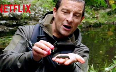 finding a bloodsucking leech animals on the loose a you vs wild movie netflix futures youtube thumbnail 400x250 - Vidéos